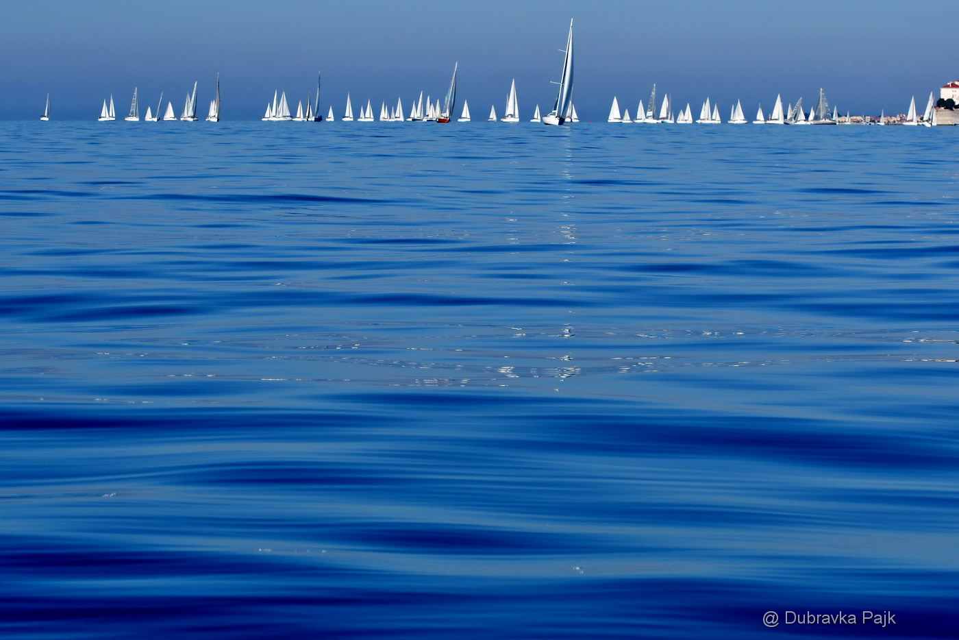 REGATTA 15. ZADARSKA KOKA,  ZADAR, OCTOBER 2019